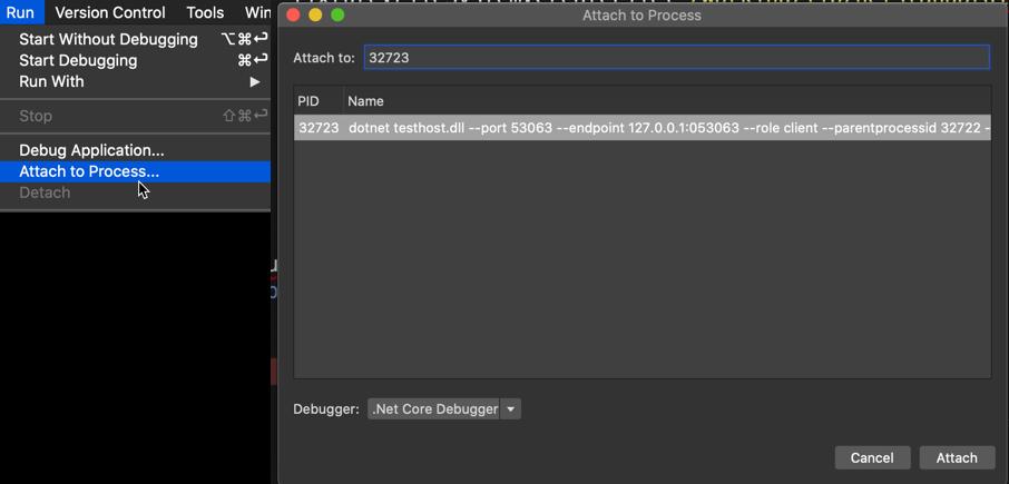 Attach to Process in VSMac